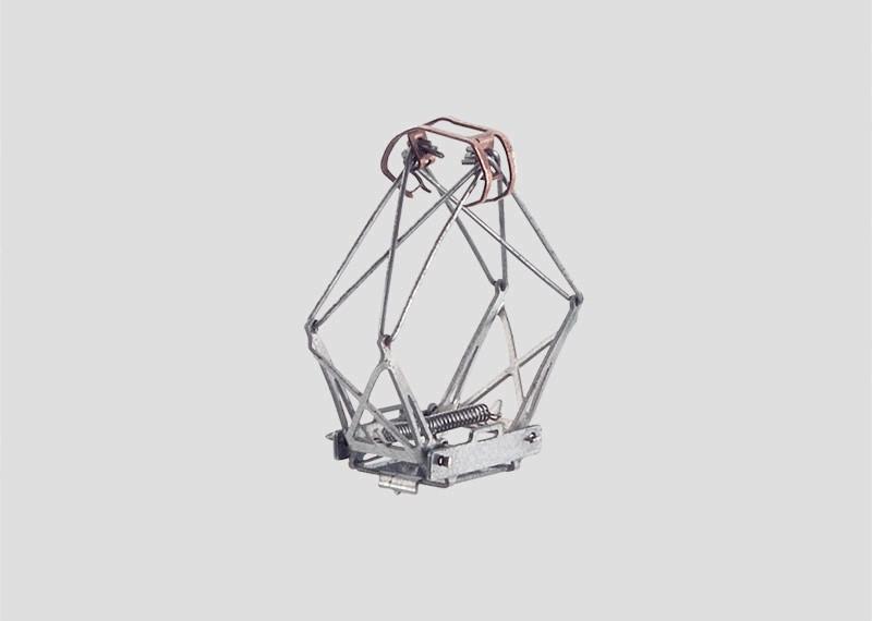 Double-Arm Pantograph.
